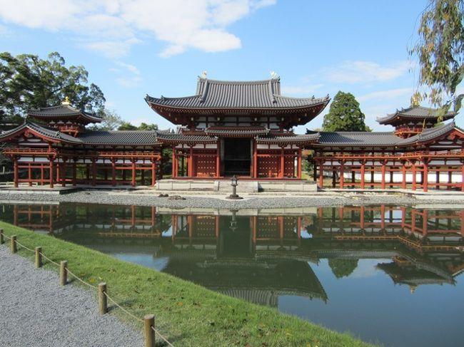 秋の京都・奈良へ旅行に行きました。<br />京都へは何度か行ったことがありますが<br />奈良は中学の修学旅行以来でしたので<br />奈良をメインに回って来ました<br /><br />1日目 京都・奈良(奈良はタクシー移動)<br />2日目 奈良(奈良はタクシー移動<br />3日目 京都(嵐山でレンタサイクル移動)