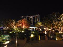 ビンタン島帰りにシンガポールでちょっと寄り道。