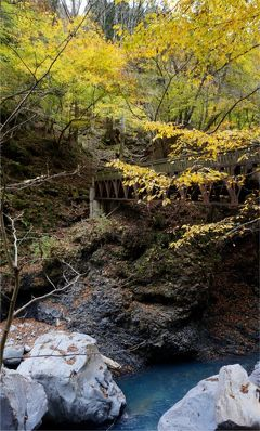荒れた道をゆくスッカン沢。美しい紅葉と渓流、滝めぐり