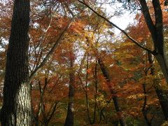 紅葉を見に昇仙峡へ