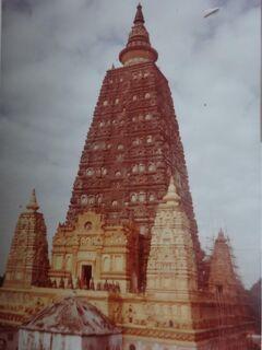 (2)1980年旧西欧(16か国)エジプト パキスタン インド ネパール136日間放浪の旅(93)インド(ブッダガヤ菩提樹)