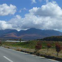 今はセロリ畑ではなく紅葉の季節、原村へ