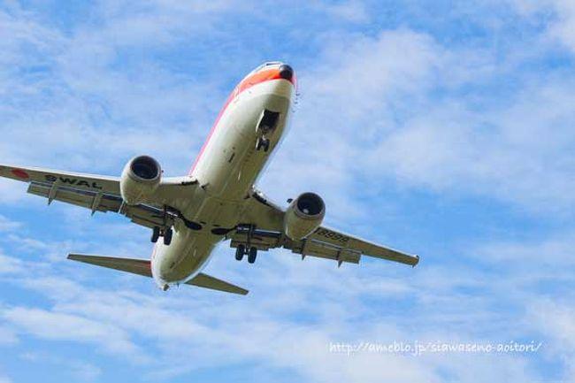 朝一の飛行機で羽田から那覇へ、石垣島までの乗り継ぎ時間が長いのでレンタカーを借りて観光後に夕方石垣島へ。<br /><br />異常気象で連日夏日28℃くらいでした。<br /><br />石垣島では白保の民宿「くんや」に二泊。<br />http://www.thida.net/m/kunya/home/info.html<br /><br />22日は夕方の便で那覇へ移動。<br />壺屋のウィークリーマンションで3泊。<br /><br />飛行機はANAの旅割。