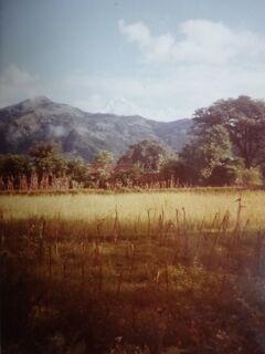 (2)1980年旧西欧(16か国)エジプト パキスタン インド ネパール136日間放浪の旅(97)ネパール(ポカラ)