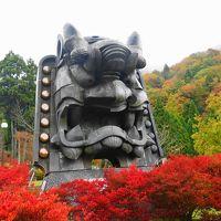 京都の紅葉!   でも京都市内じゃないよ ♪ ♪ ♪  2015年!