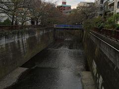 渋谷周辺まで散歩