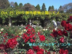 ♪秋晴れの日曜日、神代植物公園 『秋のバラフェスタ』 と深大寺♪