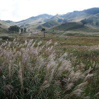 悪友S(♀)がやってきた(3) ススキの大草原・砥峰高原にご案内