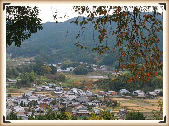 仏像に萌え~!の古都奈良ひとり旅 5 ★レンタサイクルで明日香村めぐり・・・甘樫丘、水落遺跡など★