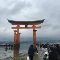 初めての厳島神社で大発見!