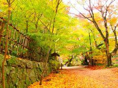 まだまだ旅行気分の、週末の滋賀散策~♪ ①湖南三山(長寿寺と常楽寺)の紅葉編