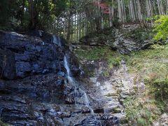 滝メグラーが行く202 紅葉を求めて三谷大滝へ 兵庫県多可町