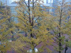 10月の札幌は吹雪だった①~札幌市内編