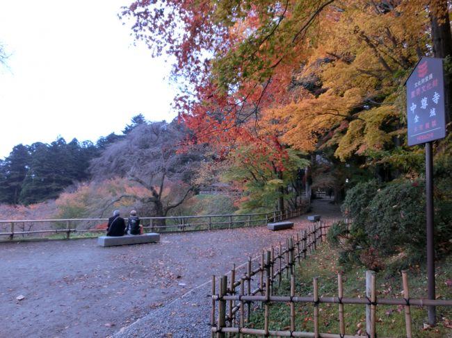 お昼頃、仙台から平泉に向かい、中尊寺だけ行きました。もっと時間があったらな。夕方に仙台に帰り、牛タンを食べました。翌日からは仕事でした。