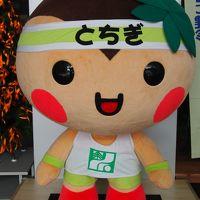 4traトラベラーPさんに会いに行く~♪ 栃木県庁がある餃子の街「宇都宮」へ行ってきた~!(2015年11月)