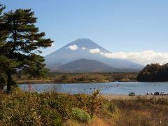 富士山麓周遊・・精進湖の大杉と精進湖のパノラマ台、本栖湖千円札ビューポイントをめぐります。