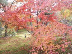 京都嵐山周辺の紅葉を愛でる