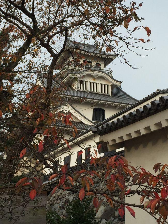 只今旅の途中。鳥取から滋賀の旅。紅葉、琵琶湖と日本の秋探しが目的!