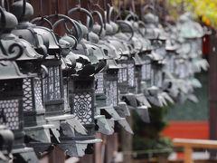 気の置けない友人たちと奈良へ~西ノ京と春日大社特別参拝~