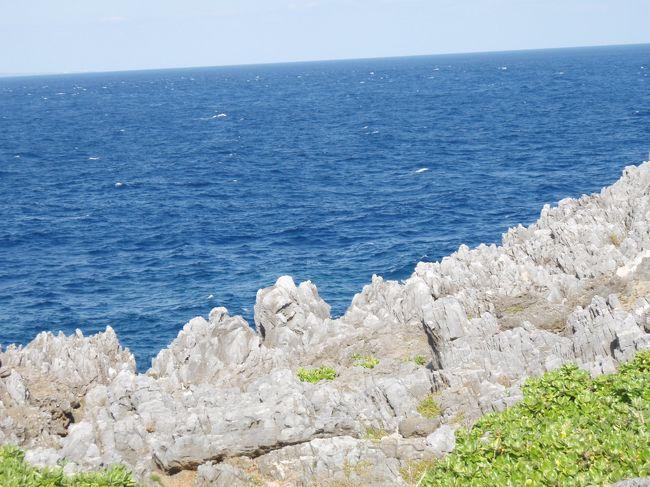秋の沖縄旅行です。<br /><br />那覇でレンタカーを借り、名護へ移動。<br />名護泊なので、思い切って辺戸岬までドライブしてきました。