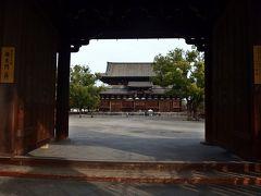 東寺秋期特別展と日本盆栽大観展