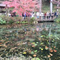 【2015年11月】岐阜で綺麗な水に出会う旅★1日目 2015/11/22