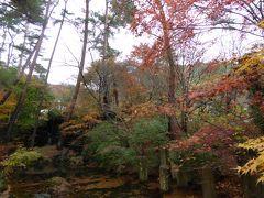 愛犬と一緒の優雅な秋の河口湖バカンス♪ Vol.5(第2日目)☆「久保田一竹美術館」の素晴らしい紅葉♪