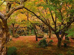 2015・京都(洛北から洛中へ)