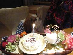 愛犬と一緒の優雅な秋の河口湖バカンス♪ Vol.7(第2日目)☆「レジーナリゾート富士」 の2回目ディナー♪