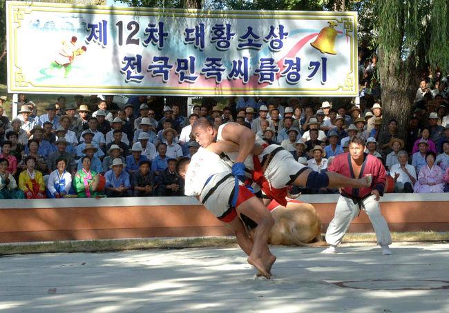 相撲はでも人気がありますが<br />朝鮮でも人気のあるスポーツです。<br />日本の相撲とはルールが少々違います。<br />今日はトシちゃんが今年に開催された相撲大会の写真を紹介します。<br />