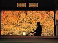 紅葉を求めて、豊岡への旅