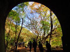 愛岐トンネル秋の公開散策