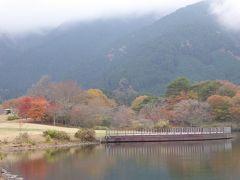 愛犬と一緒の優雅な秋の河口湖バカンス♪ Vol.11(第3日目)☆秋の「田貫湖」と「本栖湖」♪