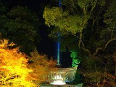 まだまだ旅行気分の、週末の滋賀散策~♪ ④石山寺の紅葉ライトアップ☆