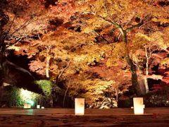 錦秋の秋!永源寺の紅葉ライトアップと湖国の迎賓館でランチ