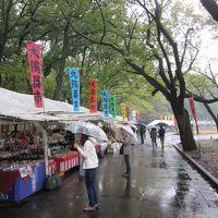 2015年11月8日:全国大陶器市 in小金井公園