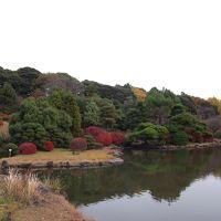 東京十社めぐり�白山神社〜晩秋の小石川植物園