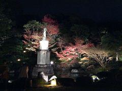 今年は一泊  京都の紅葉ライトアップ  Vol.1