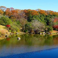 初冬の万博日本庭園