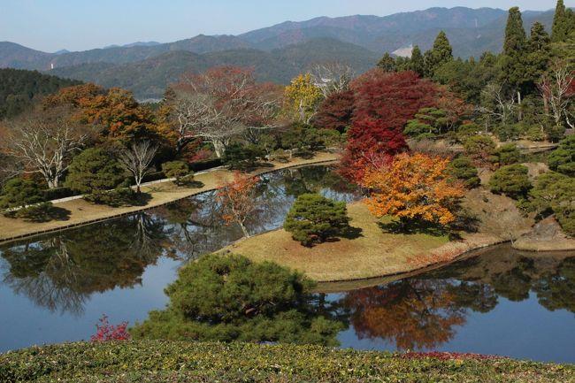 かねてから訪れたい京都の修学院離宮と桂離宮。先ず日程を決め宿を予約します。半年前なのにやっと取れた念願の京都の老舗旅館「柊屋」の旧館です。それから旅の三か月前まで待って今度は宮内庁のホームページからオンラインで両離宮の参観申請をしたら、抽選で一箇月前に参観許可通知書が送付されてきました。ホッとすると同時に幸運に感謝です!<br />当日は快晴に恵まれ午前中に修学院離宮、午後から桂離宮を参観。それぞれ40名前後のグループに説明役と皇宮警護官がつく90分弱のツアーになっています。晩秋のこの宮家山荘には池が巧みに配置された美しい庭園があり、秋色に彩られた樹木が湖面に映え、それはそれは幻想的な別世界でした。<br />(表紙写真は修学院離宮の高台に位置する隣雲亭から俯瞰した浴龍池に浮かぶ西島の美しい紅葉風景)<br />夕刻に市役所から程近い麩屋町通りの老舗旅館「柊屋」へ足を運びます。香が漂う玄関では女将や仲居さんに「おかえりやす」と迎えられました。旧館は200年の伝統から醸し出されるしっとりとした佇まいと侘びさびの世界です。数寄屋造りの部屋に入ると床の掛け軸や生け花が素晴らしく、螺鈿や木目込みの調度品を含め何処か凛とした風情を感じるのです。<br />係の仲居さんも若いのに立ち振る舞いが清々しく、又部屋ごとに挨拶に訪れる女将のおもてなしにさすが超一流老舗旅館と感じました。部屋の風呂は小さめなので、貸切家族風呂を利用しました。やや広く沸かし湯ですが他人に気兼ねることなく夫婦でゆっくりと過ごし、美しい大原女のステンドグラスを愛でながら安らぐことが出来ました。<br />ここのハイライトは何と言っても部屋での夕食です。次から次と運ばれる旬の食材を吟味した本格的な京懐石とそれを彩る清水焼の器とのコラボレーション、更に絶妙なる味に感服です。和食がユネスコの無形文化遺産に登録されるのも、むべなるかなと感じます。<br />朝食も部屋食を選びました。鰈の干物、こだわりの湯豆腐、温泉卵、チリメンジャコ、京漬物など伝統的な朝食を美味しくいただきました。支払いのためフロントへ行くと少し混んでいましたが外国のお客様が多いのに驚きです。聞くところによると桜や紅葉の季節は外国のお客様が4割を超えると知り二度びっくりポンでした。<br />支払は二人で1泊締めて113,590円、これを高いと感じるか或るいは安いと感じるか、人それぞれでしょうが、私はお値段以上の至福の時と感じました。<br />チェックアウトの11時まで売店で柊マーク入りのお土産を買い、女将と大女将らに見送られ、爽やかな気分で雅な休日の終わりを迎えました。