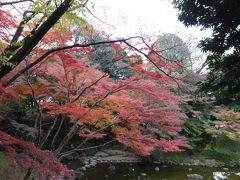 初冬の紅葉「小石川後楽園」優雅な鑑賞♪