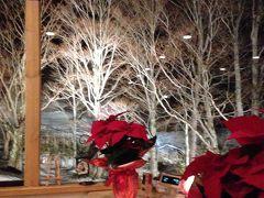 もうすぐ来るクリスマス~♪vol.1 ホテルグランフェニックス奥志賀へ☆。.:*☆