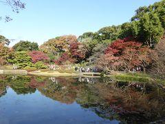 初冬の「皇居東御苑」♪ 美しい紅葉の庭園に酔いしれる♪