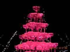 ☆8 国営昭和記念公園 Winter Vista Ilumination 2015