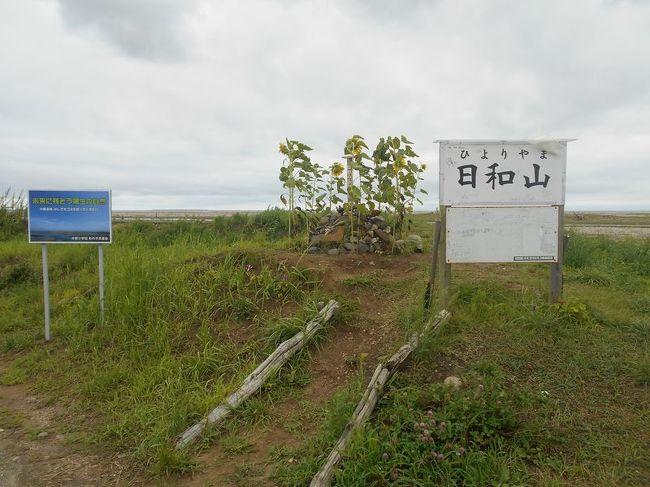"「B級でマイナー」というと失礼かもしれませんが、あまり一般的にメジャーではない観光地も全国にはたくさんあります。<br />今回は、仙台市にある日本一低い山「日和山」をご紹介します。<br />仙台空港へ行くついでに立ち寄ってみました。<br /><br /><br />★「B級でマイナーな観光地」シリーズ<br /><br />荒川ロックゲート(東京)<br />http://4travel.jp/travelogue/10438358<br />鮮魚列車&日本一短い商店街(大阪)<br />http://4travel.jp/travelogue/10420078<br />鹿嶋まつり&鹿島臨海鉄道鹿島臨港線(茨城)<br />http://4travel.jp/travelogue/10623562<br />鳴海球場跡(愛知)<br />http://4travel.jp/travelogue/10416547<br />西寺跡(京都)<br />http://4travel.jp/travelogue/10467065<br />「戸(へ)」のつく街めぐり(青森&岩手)<br />https://ssl.4travel.jp/tcs/t/editalbum/<br />関西電力黒部専用鉄道""上部軌道""(富山)<br />http://4travel.jp/travelogue/10535489<br />嘉穂劇場(福岡)<br />http://4travel.jp/travelogue/10536327<br />遊楽部川の鮭の遡上(北海道)<br />http://4travel.jp/travelogue/10555940<br />石見神社&白鳥城(兵庫)<br />http://4travel.jp/travelogue/10421611<br />西武秩父線のローカル駅(埼玉)<br />http://4travel.jp/travelogue/10441164<br />深谷駅&さきたま古墳&あついぞ!熊谷(埼玉)<br />http://4travel.jp/travelogue/10439881<br />内之浦&宮之城&藺牟田池(鹿児島)<br />http://4travel.jp/travelogue/10470926<br />京都一条妖怪ストリート(京都)<br />http://4travel.jp/travelogue/10565267<br />町田リス園(東京)<br />http://4travel.jp/travelogue/10416970<br />靭(うつぼ)公園(大阪)<br />http://4travel.jp/travelogue/10420097<br />士幌線廃線跡(北海道)<br />http://4travel.jp/traveler/satorumo/album/10440854/<br />氷のトンネル(北海道)<br />http://4travel.jp/travelogue/10606410<br />日本最北のマクドナルド&地吹雪の抜海駅(北海道)<br />http://4travel.jp/travelogue/10431780<br />""ののちゃん""と""タブチくん""のふるさと・玉野(岡山)<br />http://4travel.jp/travelogue/10563273<br />立山砂防軌道&立山カルデラ(富山)<br />http://4travel.jp/travelogue/10533323<br />日本一の長寿村&塩川&喜屋武岬(沖縄)<br />http://4travel.jp/travelogue/10470372<br />伊勢崎西部公園(群馬)<br />http://4travel.jp/traveler/satorumo/album/10723218<br />長浜大橋(愛媛)<br />http://4travel.jp/travelogue/10450812<br />くりはら田園鉄道乗車会(宮城)<br />http://4travel.jp/travelogue/10620825<br />塩田津&八本木宿&浜金屋&筑後川昇開橋(佐賀)<br />http://4travel.jp/travelogue/10468519<br />モエレ沼公園&宮島沼&777段ズリ山階段(北海道)<br />http://4travel.jp/travelogue/10462083<br />河童の里(福岡)<br />http://4travel.jp/travelogue/10478346<br />有田川町"