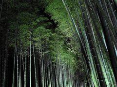 京都 嵐山 花灯路 2015