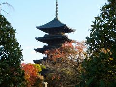 東寺と西本願寺え行ってきました