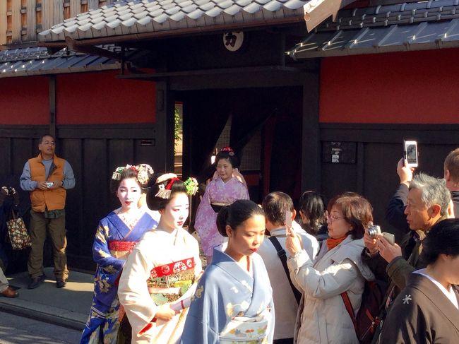 師走の13日、「事始め」ということで京都祇園では芸舞妓さんたちがお世話になったお師匠さんのもとへお礼参りされるとのこと、写真倶楽部からのお誘いもあり伺いました。が、そこで見た光景は。。。<br />午後からは気を取り直し、東山界隈にてキモノ姿の素人さん中心にパチパチ。<br />名残紅葉を愛でながらも、笑いの要素あり、久々に初冬の京を愉しんできました ^_^