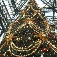 ひとりDisney 春の陽気のクリスマス in TDL Part1