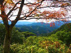 紅葉が見ごろと聞いて来てみた鳳来寺山